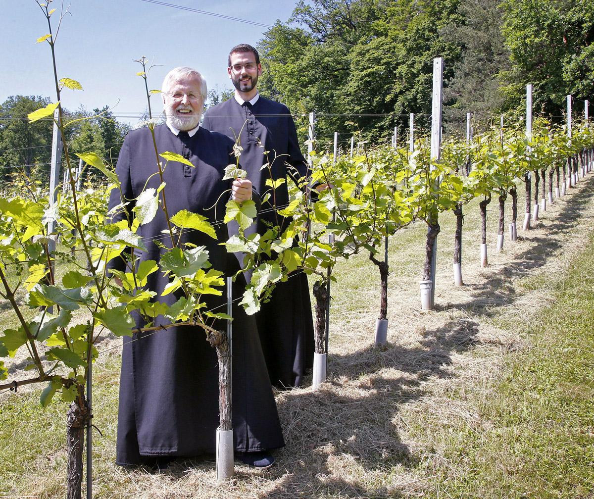 Ordensmänner im Weingarten des Stiftes St. Paul im Lavanttal - Foto: Gert Eggenberger/Stift St. Paul im Lavantal